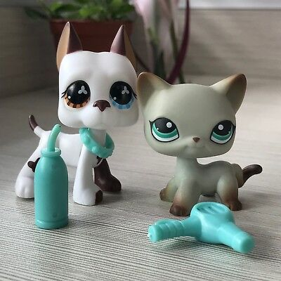 2Pc Littlest Pet Shop Lps Short Hair Cat 391 Great Dane 577 Brown And Blue Eyes