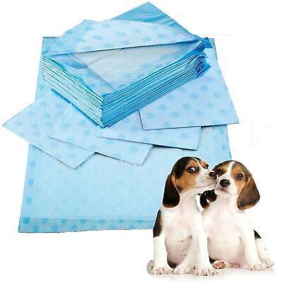 Super Absorbent Scented Puppy Training Pads 60x60cm Trainer Toilet Wee