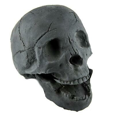 Myard Fireproof Imitated Human Fire Pit Skull Gas Log for NG, LP Wood Fireplace,