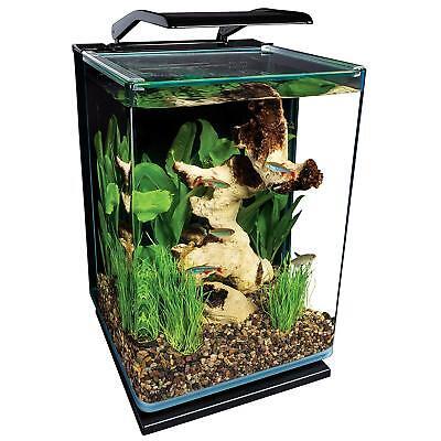 5-Gallon Aquarium LED Kit Portrait Glass Fish Tank Filter Complete Set Deluxe US