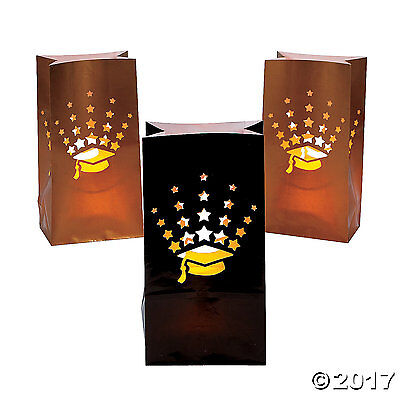 12 Graduation Party Decoration LUMINARY BAGS - Luminary Bag