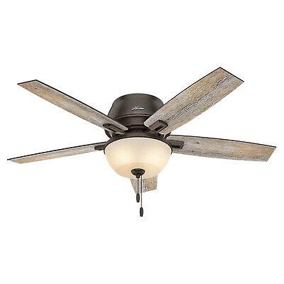 Hunter Fan Company Low Profile 52 Inch Ceiling Fan, Onyx