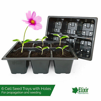 400 x 6 Cell Bedding Plant Pack Tray Inserts for Half Size Seed Trays