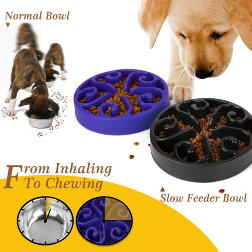 Slow Feed Interactive Bloat Stop Dog Bowl Large Eating Food