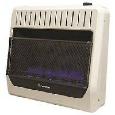 Procom Heating TV209315 30K BTU DF BLU Heater 209315