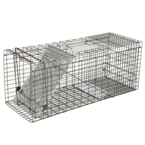 """32"""" Humane Animal Trap Steel Cage for Live Rodent Control Ra"""