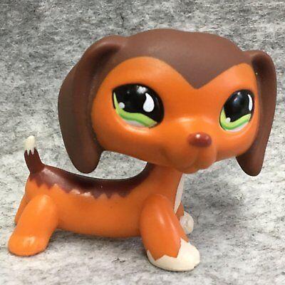 Littlest Pet Shop Animals LPS Toy #675 Savannah Savvy Dachshund Dog A