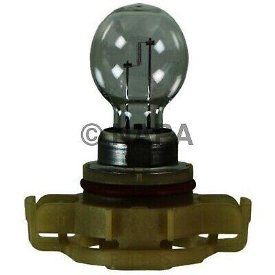 Fog Light Bulb-LT NAPA/LAMPS-LMP 2504