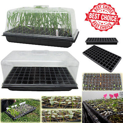 Plant Tray Kit (SEED STARTER PROPAGATION KIT TRAY 72 Cell Seedling Plant Clone Greenhouse)