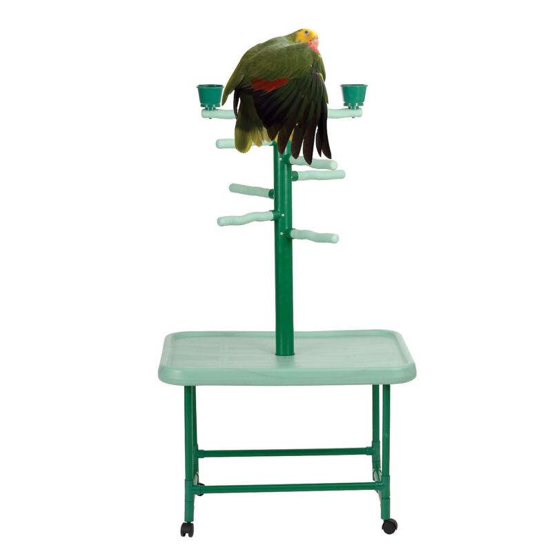 """Caitec Acrobird Medium Raised Base Play Tower, 32"""" L X 22"""" W X 54"""" H"""