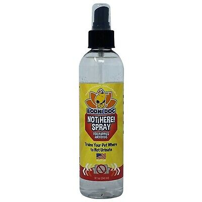 Bodhi Dog Not Here! Spray | Trains Your Pet Where Not to Urinate | Repellent ...