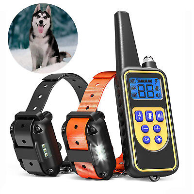 Waterproof Dog Training Electric Collar Rechargeable Remote Control 875 Yards Dog Shock Collar Remote