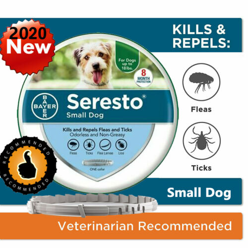 Bayer Seresto Flea and Tick Collar for Small Dogs Up to 18lbs 8 Month Protection