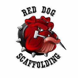 Red Dog Scaffolding Brighton-le-sands Rockdale Area Preview