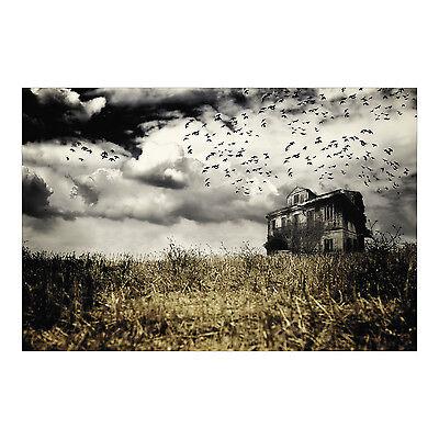Haunted Farmhouse Backdrop Photo Prop Wall Mural HALLOWEEN HOUSE DECORATION](Haunting Halloween Photos)