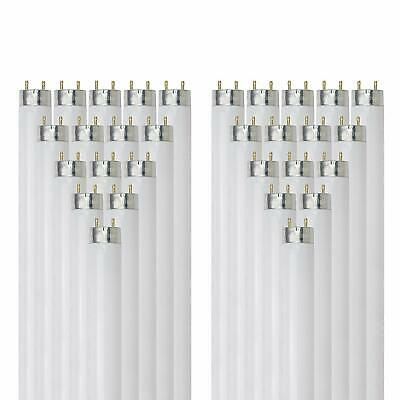 Sunlite F17T8/SP865/30PK T8 Bi-Pin G13 Base Tube (30 PK), 17W/6500K, Daylight Base 6500k Daylight Fluorescent Tube