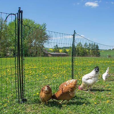 horizont - Puerta de la valla para Malla eléctrica para gallinas valla...
