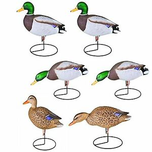 6 x STORM FRONT MALLARD DUCK DECOYS on STANDS decoy wildfowling hunting magnum