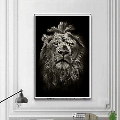 Abstract Art Lion Black White Paint Silk Canvas Poster Wall Decor Unframed A518