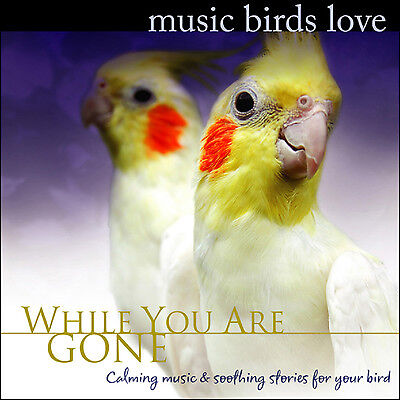 "Cockatoo Toy (""Music Birds Love"" CD) Toys for Cockatiels, Cockatiel Toy - NEW!"