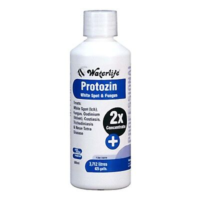 Waterlife Protozin 500ml Fungal Disease Treatment