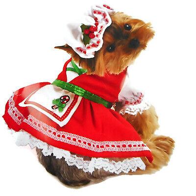Pet Dog Candy Cane Cutie Costume Large Candy Cane Cutie Costume