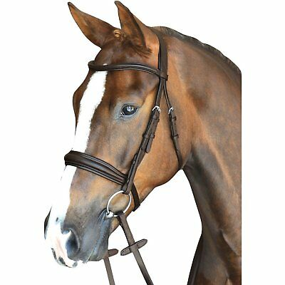 Collegiate Mono Crown Padded Raised Leather Cavesson Bridle with Rubber (Raised Cavesson Bridle)