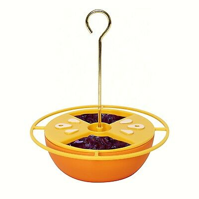 Citrus Buffet Oriole Birdfeeder for Nectar, Jelly w/ built in Ant Moat