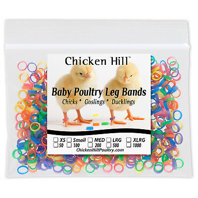 500 Multi Color Chick Leg Bands 14 Size 4 Poultry Ducks Light Geese Day Old