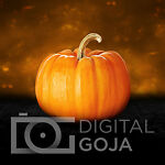 DigitalGoja