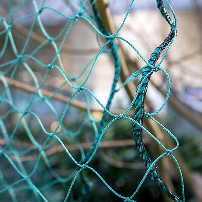 Poultry Netting 25 X 100 2 Heavy Knotted Aviary Anti Bird Net Polyethylene