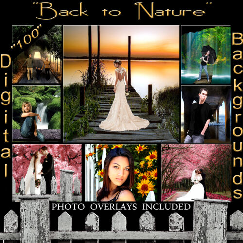 Digital Backgrounds Sandwhich Layered psd Props Nature Photography Backdrops 1Q