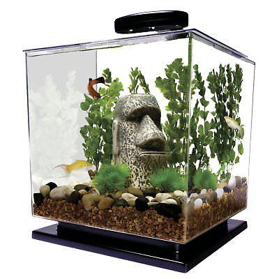 Fish Aquarium 3 Gallon Tank Kit LED Light Tetra Filter Home Office Beta Goldfish