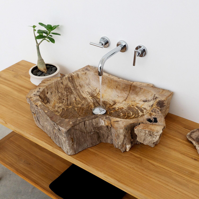 wohnfreuden Fossiles Holz Hand-Waschbecken mit Galerie Naturstein Waschschale