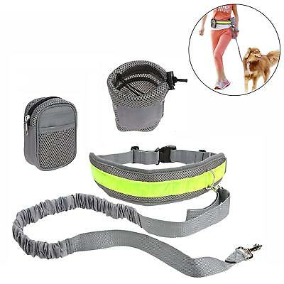 Hands Free Dog Training Kits with Adjustable Waist Belt and Storage Bags a01