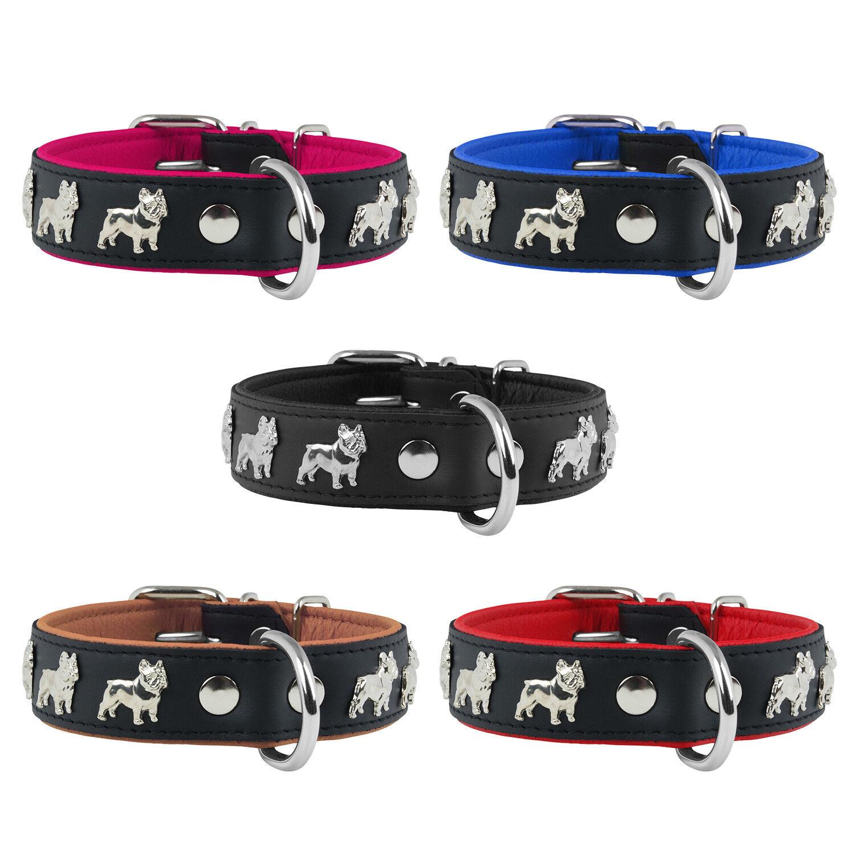 Lederhalsband Französische Bulldogge Hundehalsband Echtleder Halsband Nieten