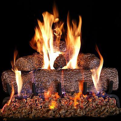 Embers Peterson Real Fyre 24-inch Oak Gas Log Set Vented Burner Match Light