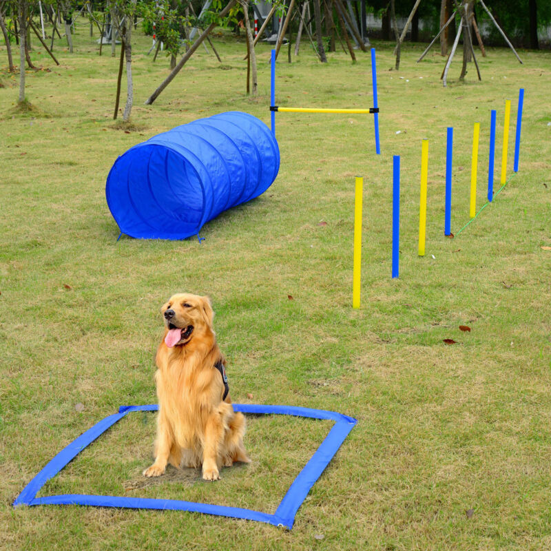 Backyard Dog Agility Training Kit Obstacle Course Equipment Jumps Tunnel