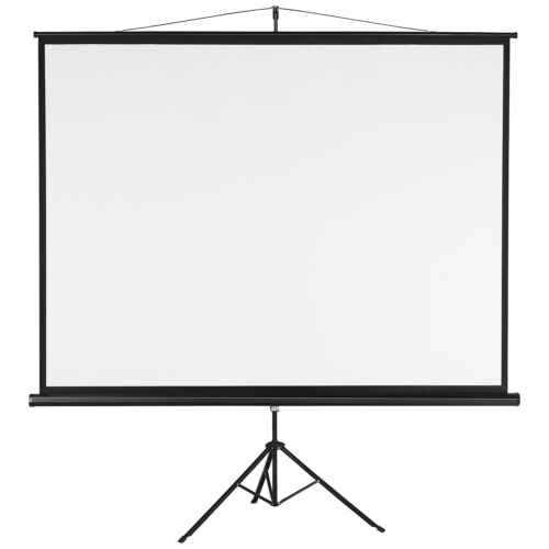 Portable Projector Screen Outdoor Indoor Movie Cinema Theate