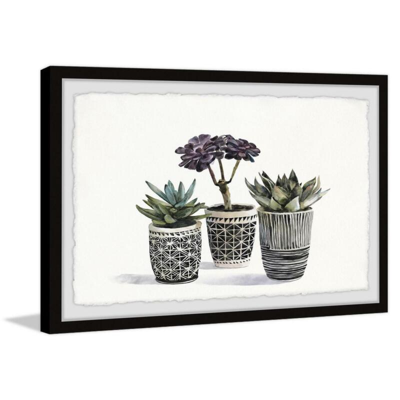 """Marmont Hill Bonsai and Succulents Framed Painting Print 36"""" x 24"""""""