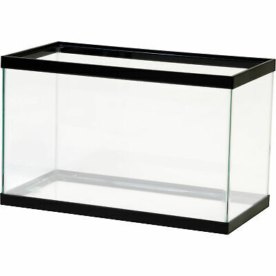 10 Gallon Glass Aquarium (10 Gallon Fish Tank Aquarium Clear Glass Terrarium Pet Aqua Reptiles Goldfish )