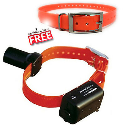 Dog Beeper Collar - DT Systems BTB800 Baritone Beeper-Locator Dog Collar, Rechargeable