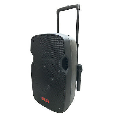 Wireless Battery Powered Pa System - NEW -Battery Powered Portable PA System with 2 Wireless Microphones - 12