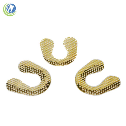 Dental Lab Grid Strengtheners Frego Reinforcement Mesh 10 Pcs Gold Plated Lower