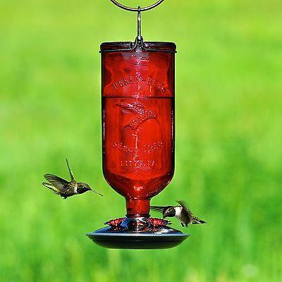 Perky-Pet Antique Glass Bottle Hummingbird Feeder 16 ...