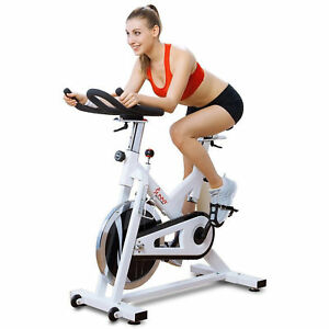 cb74fcee892 Sunny Health & Fitness SF-B1110 Indoor Cycling Bike White for sale ...