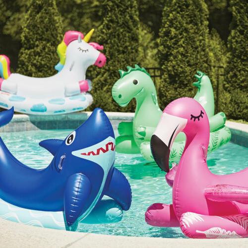 Novelty Ride-On Pool Float