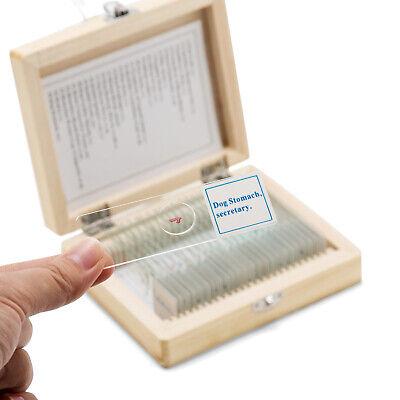 Professional Glass 25pcs Prepared Microscope Slides Specimen Wooden Case