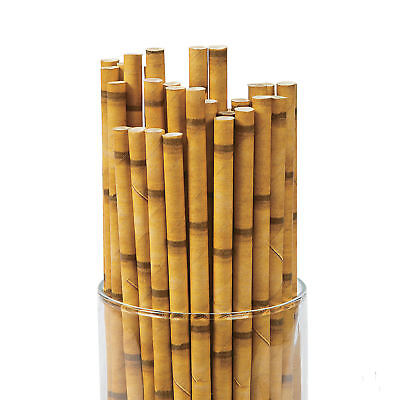 24 BAMBOO Drinking STRAWS Tropical LUAU Party WEDDING HAWAIIAN FROZEN (Bamboo Drinking Straws)