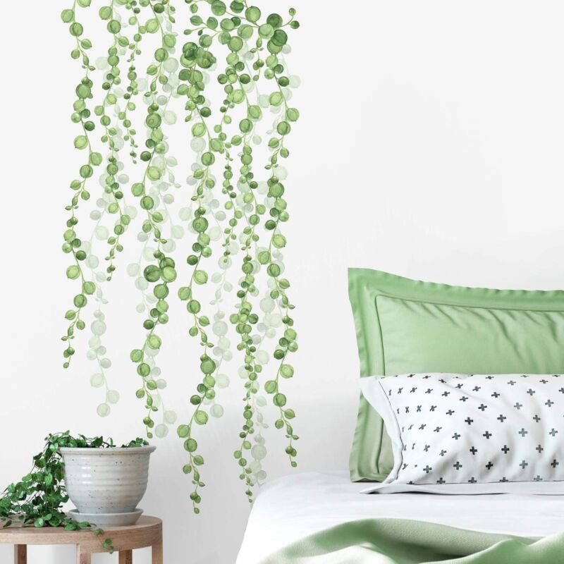 String Of Pearls Hanging Vines Leaves 2 Large Wall Decals Home Decor Stickers 34878078045 Ebay